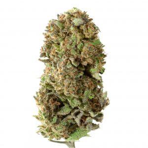 Suver Haze – Premium Hemp Flower – 3.5 g